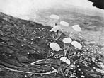 RAF Parachute Supplies Over Yugoslavia. RAF heavy and medium bombers recently dropped arms, ammunition, and demolition explosives at two points on either side of a stretch of German-held Yugoslav territory which had been narrowed to a bottle-neck by constant partisan attacks on both flanks.