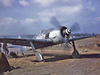 A captured German Focke-Wulf Fw 190A-8 (W.Nr. 681497, White 11) of 5./JG 4 at St. Trond airfield, Belgium, circa 1 January 1945. This aircraft was flown during on 1 January 1945 by Corporal Walter Wagner who was hit by flak during the attack over St. Trond airfield. The engine died and he had to make an emergency landing. The weapons have obviously been removed. The photo was taken by the resident USAAF 404th Fighter Group.