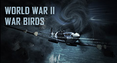 WORLD WAR II  WAR BIRDS